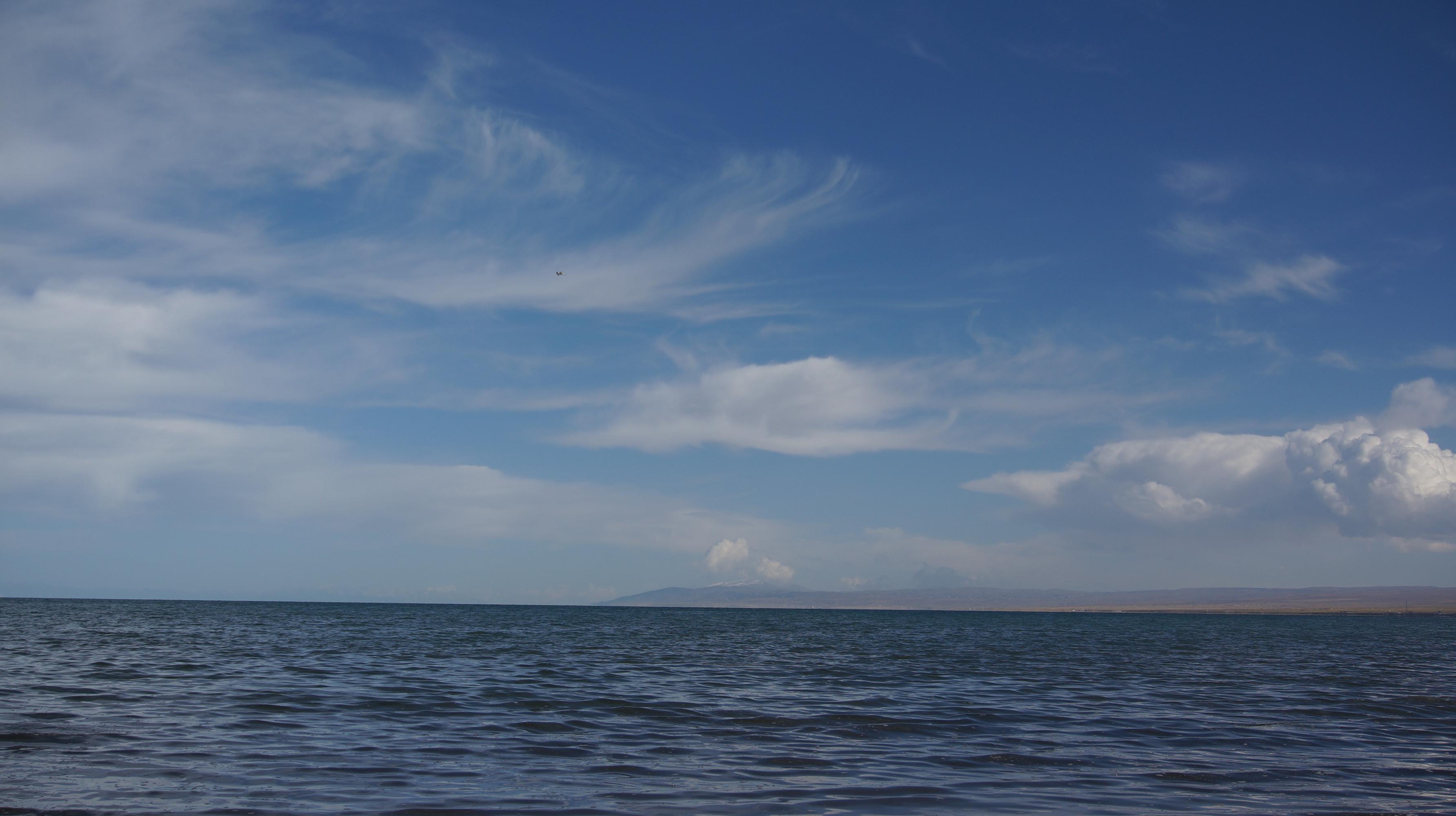 青海甘肃,不一样的美,不一样的路 第36张
