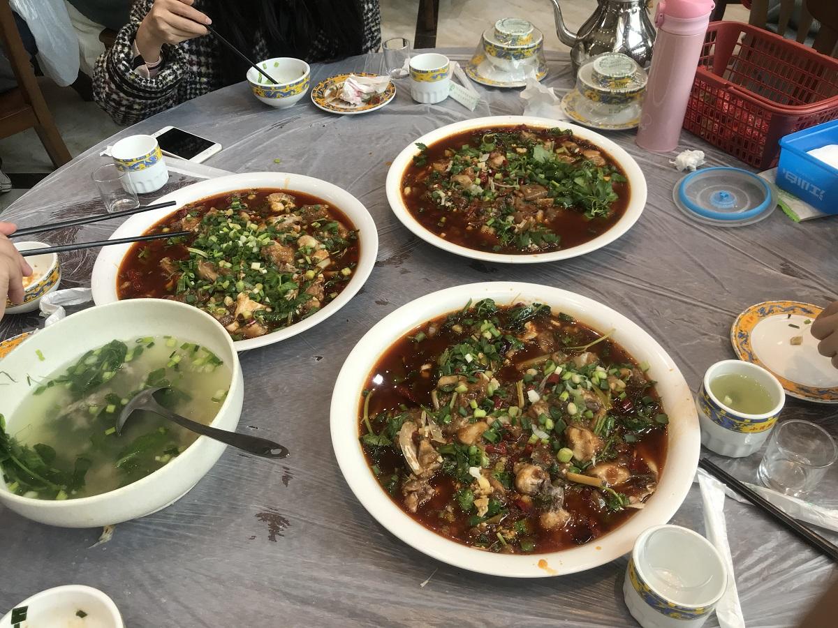 潼南菜花节 第3张